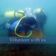 Join National Underwater Cleanup 2016