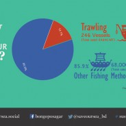 In search of an effective deep sea trawling ban season