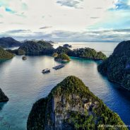 What works in shark conservation in Raja Ampat MPA Network